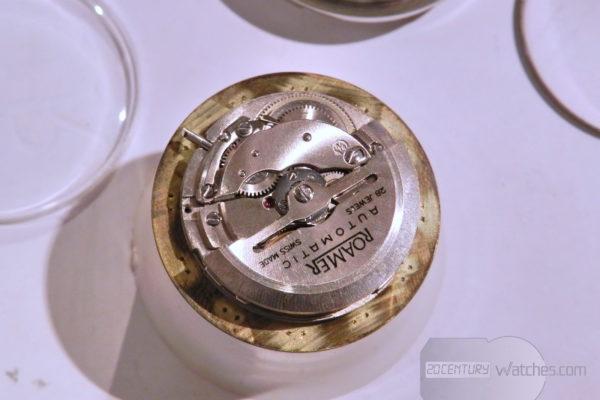 roamer mustang - DSCN6750_resize