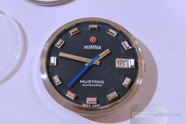 roamer mustang - DSCN6762_resize
